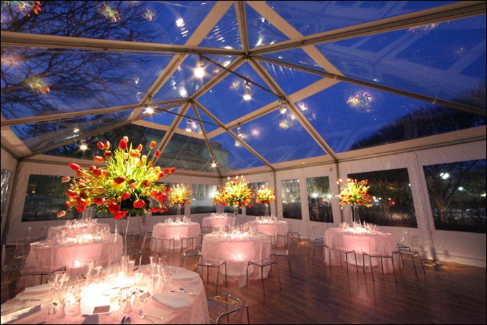 Skyline Tent Company Clear Top at Night