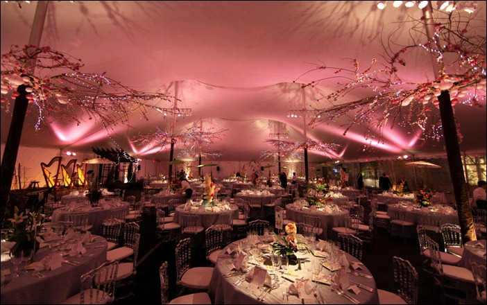Pink wash and pinspots Skyline Tent Co.