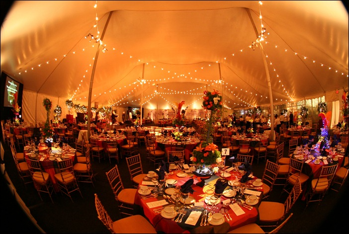 Skyline Tent Lighting Century Tent